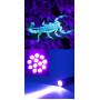 Фонарь ультрафиолетовый компактный